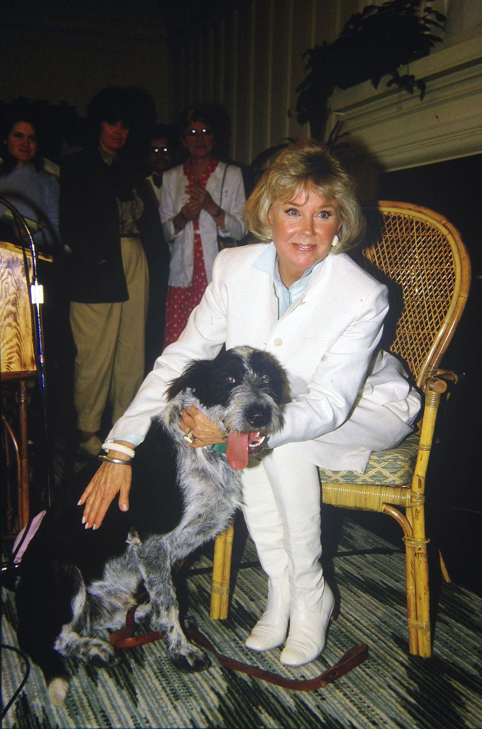 Westlake Legal Group 5cd9842e210000590080254a A Look Back At Doris Day's Life And Career In Photos