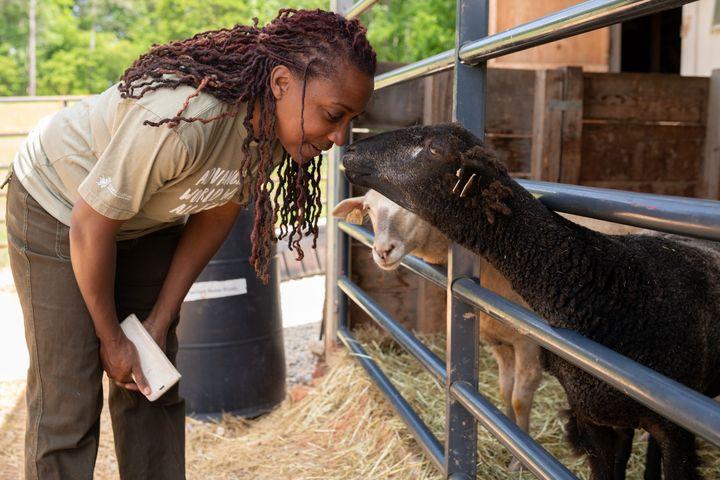 Keisha Cameron checks on her sheep at her farm in Grayson, Georgia.