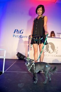 Paws for the Cause Gala: Some of Our Fave Furry