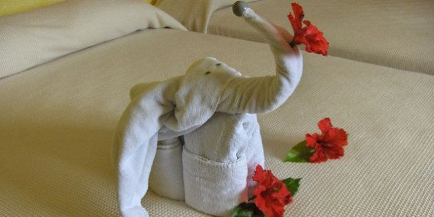 Hotel Towels As Art: The Best And Worst Resort Masterpieces