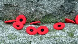 Canadians Show Growing Interest In Attending Remembrance Day