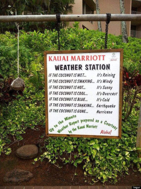 Kauai Marriott's 'Weather Station' Is Pretty Much Hawaiian Humour