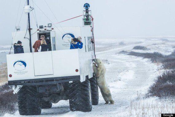 Churchill, Manitoba, Canada's Polar Bear Capital, As Seen From Google