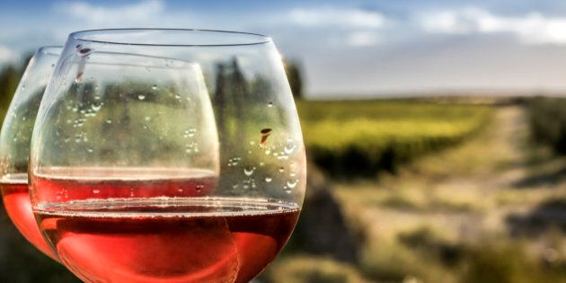 Forefront of a glasses of rosé wine, as a background, the vineyard and the Andes. Mendoza, Argentina.