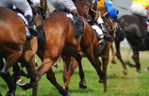 The World's 6 Best Horseracing