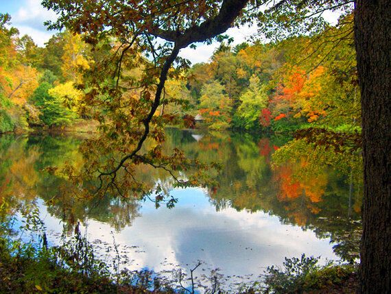 5 Places Where You Haven't Missed The Fall Colours