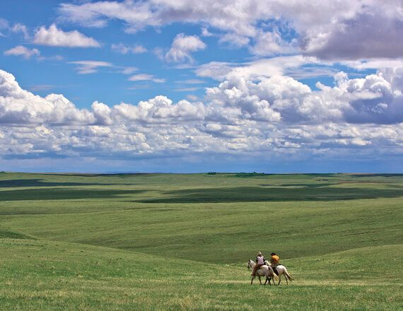 Canada's Grasslands: Save The World's Most Endangered