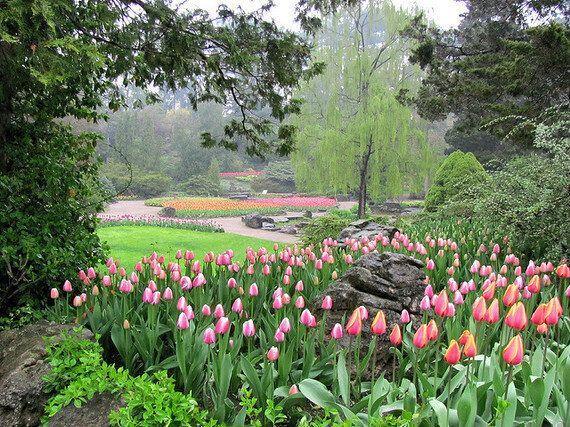 Celebrate Spring At Canada's Most Beautiful Public