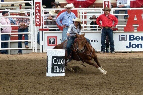 How To Make The Most Of Your Calgary Stampede