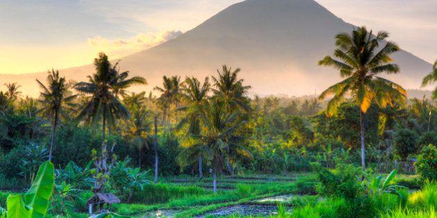 Indonesia, Bali, East Bali, Amlapura, Rice Fields and Gunung Agung Volcano
