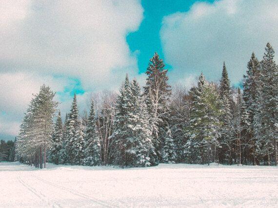 Skating Through A Winter Wonderland At Arrowhead Provincial