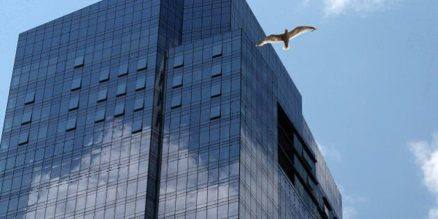 BOSTON, MA - JULY 20: A bird flies by the new Millennium Tower, located on the corner of Summer and Washington...