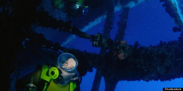 Talking Sustainable Tourism With Jacques Cousteau's