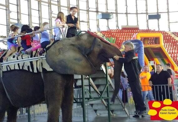 Solidarity For Nosey's