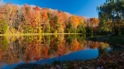 The Ultimate Fall Foliage Tour Through