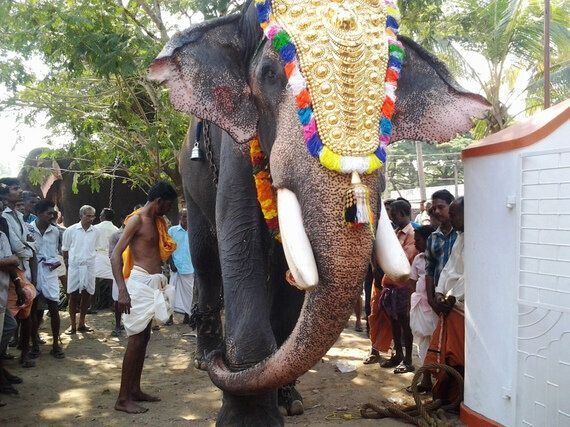 Redefining The Fate Of Kerala's