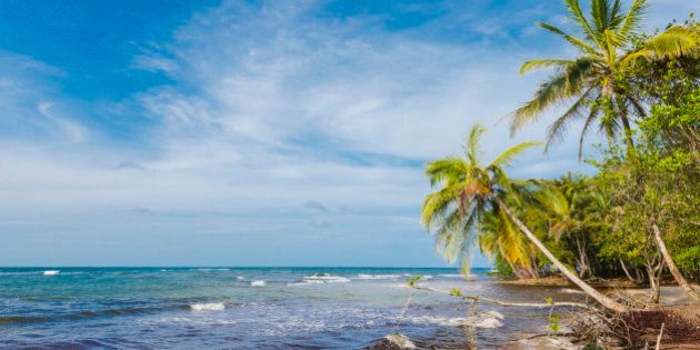This is a horizontal, color, royalty free stock photograph of a remote tropical beach along the Caribbean coast in the Limon province of Costa Rica. This idyllic landscape is part of the Gandoca Manzanillo National Park. Palm trees line the shore of the blue sea. There is lots of copy space in the sky. Photographed on a bright sunny day with a Nikon D800 DSLR camera.