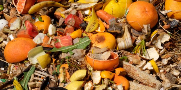 Organic kitchen waste in compost pile close up including grapefruit and lemon rinds, peanut shells, tea...