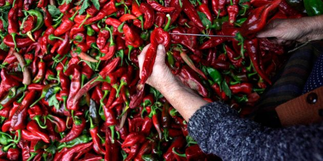 In this photo taken Monday, Sept. 23, 2013, a woman strings peppers preparing themt for drying in the...
