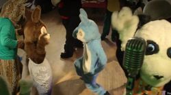 WATCH: Furries Dance To A Song About Being On Crack