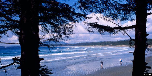 Google Maps L'Anse Aux Meadows, Pacific Rim National
