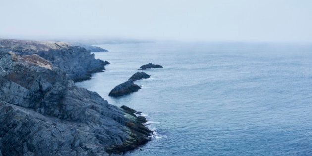 Fog and storm along the Atlantic Ocean shoreline of Mistaken Point Ecological Reserve in the Avalon Peninsula...