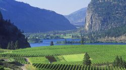 A Weekend In Okanagan Wine