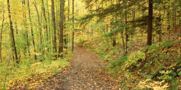 Rouge River Valley Park, Scarborough, Ontario,