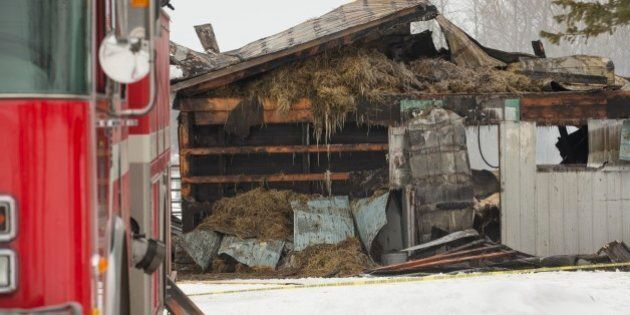 MOUNT FOREST, ON - JANUARY 15: Another barn fire involving the death of horses in Southern Ontario has...