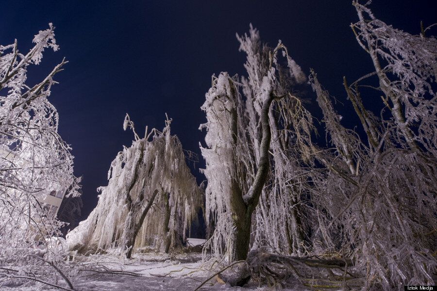 11 Surreal Photos From Slovenia's Worst Ice Storm In Living