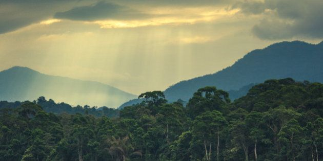 sun rays early in the morning over the jungle and mountains behind the airport of la ceiba in honduras,...