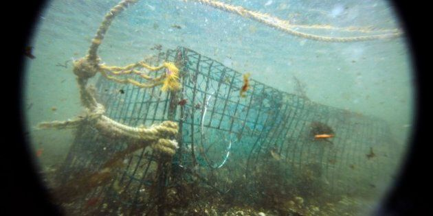 In this Friday, Nov. 13, 2009 photo, a lost lobster trap sits on the ocean floor off Biddeford, Maine....