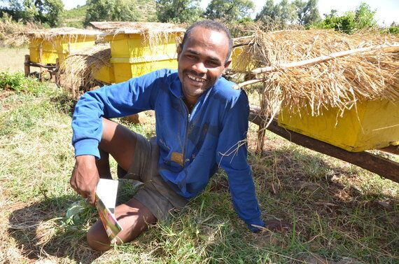 Bees Gave This Ethiopian Youth Co-Op a Chance to