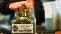 Pot Tourism Could Be A Big Hit