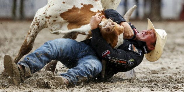 K.C. Jones of Decatur, Texas wrestles a steer in the steer wrestling event during Championship Sunday at the finals of the Calgary Stampede rodeo in Calgary, Alberta, July 12, 2015. REUTERS/Todd Korol