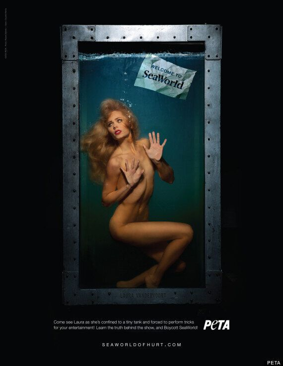 Laura Vandervoort Naked For PETA: Actress Goes Nude For Anti-SeaWorld