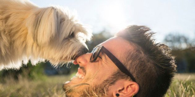 Dog and his owner - Cool dog and young man having fun in a park - Concepts of
