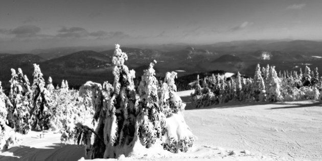 Ski slopes and snow covered trees in Mont Tremblant, Québec