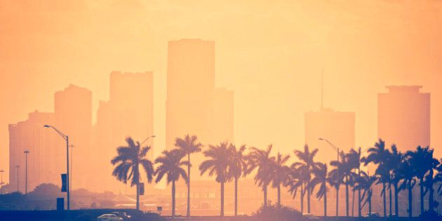 back lit orange toned sunset miami scene - a line of palm trees in the foreground lining beside the highway connecting miami with the beaches and the brickell skyline in the background