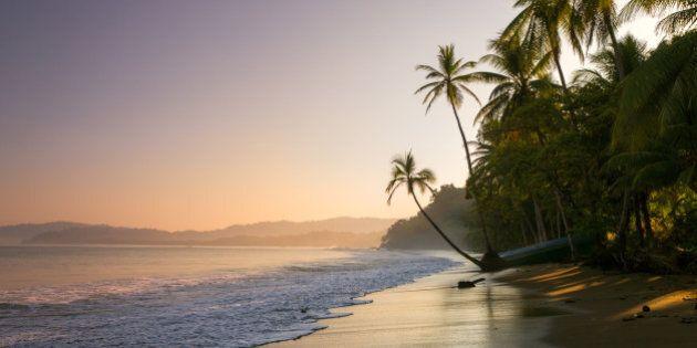 Colourful sunset on palm fringed beach, Bahia Drake (Drakes Bay), Osa Peninsula, Costa