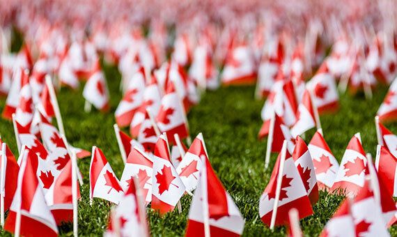 Thousands Of Flags Will Be Planted Outside Canada's Largest Veterans