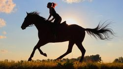 Saddle Up: 7 Ways To Live The Ranch