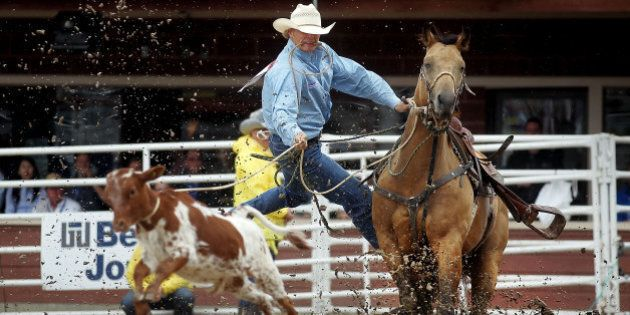 CALGARY, AB - JULY 11: Clif Cooper leaps off his horse while chasing down a calf during the tie-down roping competition in the rodeo at the Calgary Stampede on July 11, 2011 in Calgary, Alberta, Canada. The ten day event, drawing over one million visitors, is Canada's largest annual rodeo and is billed as the 'Greatest Outdoor Show on Earth.'  (Photo by Mario Tama/Getty Images)