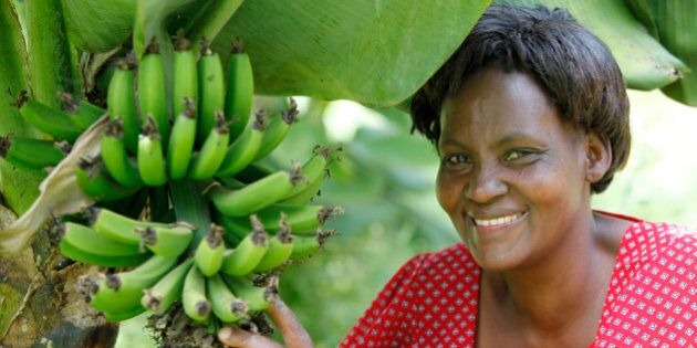 Janet Karimi, in her garden, has been a client of KWFT microfinance since 2007. She is currently servicing...