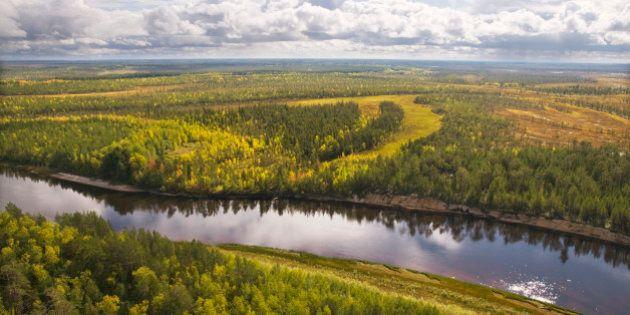Autumn, taiga, Western Siberia.Khanty-Mansi Autonomous Area.