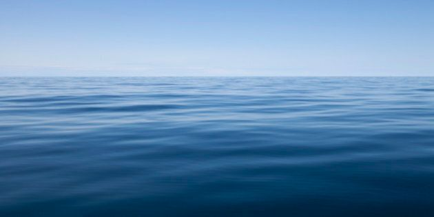 Canada's Oceans Need More Protected