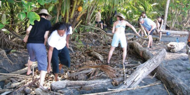 A group clearing logs and debris from a recent flood (to give the leatherback more high-and-dry places to dig her nest).  (Photo by Pokin Yeung/MCT/MCT via Getty Images)