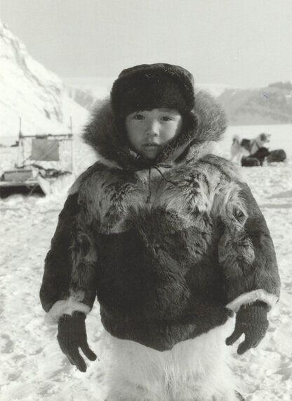 Polar Bear Ban-Wagon Targets Inuit