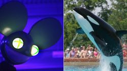 Deadmau5 To Marineland: 'Lose The F***ing