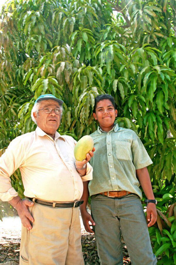 The Mango Man Cometh (in the Cayman